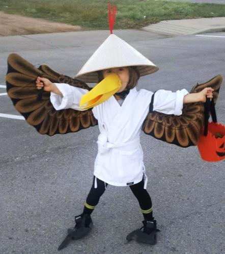 master crane - Kung Fu Panda Halloween