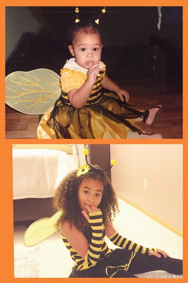 2007/2015 Still a busy bee
